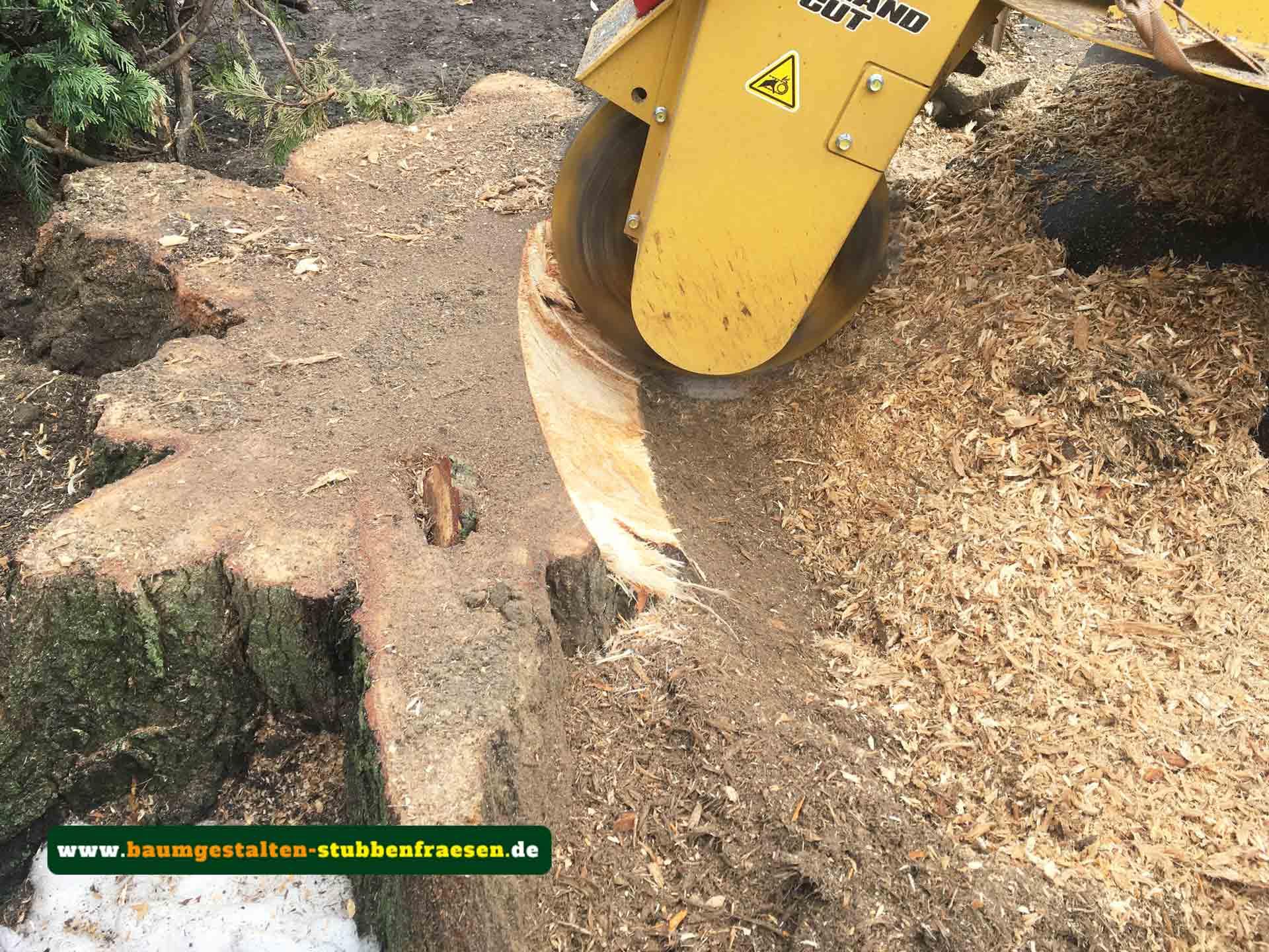 Etwas Neues genug Stubbenfräsen zum Baumstumpf entfernen - Baumgestalten #PZ_16